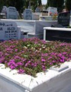 Çıplak Ailesi – Gülbahçe Mezarlığı